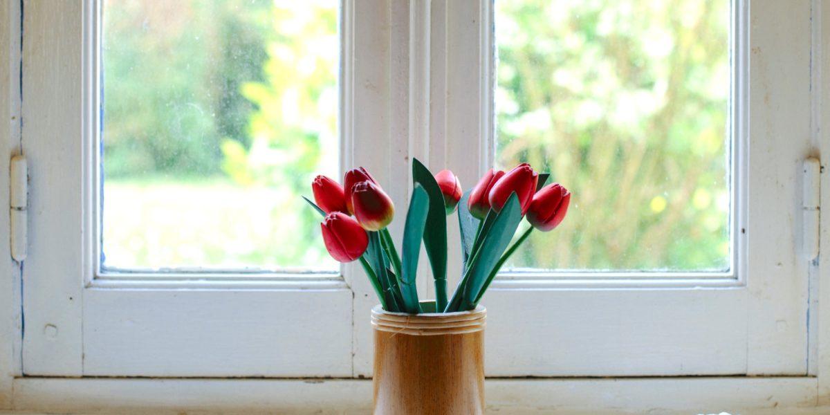 изображение пластикового окна и цветов